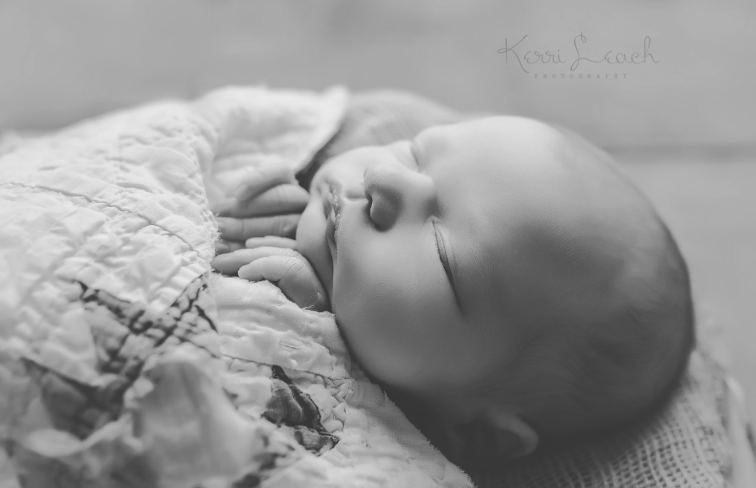 newborn session Evansville, IN-Indiana newborn photographer-Newborn session-Newborn photography-Newborn poses