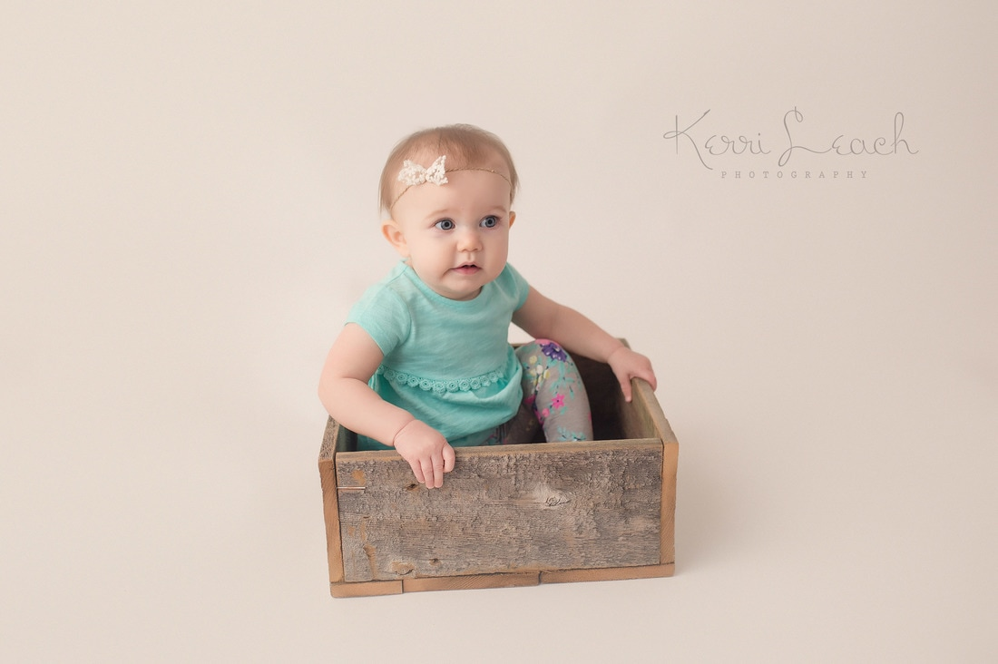 1 year session-milestone session-Evansville, IN photographer-Child photographer Indiana