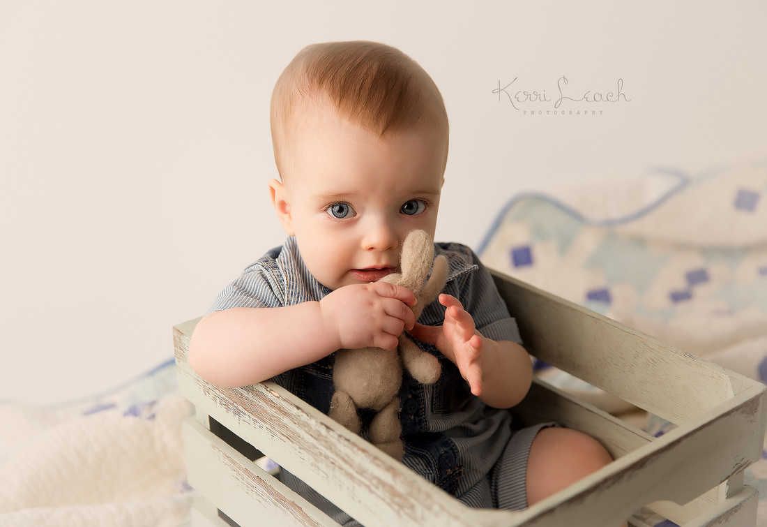 Kerri Leach Photography-9 month milestone-milestone session-Evansville IN photographer-Evansville IN newborn and baby photographer
