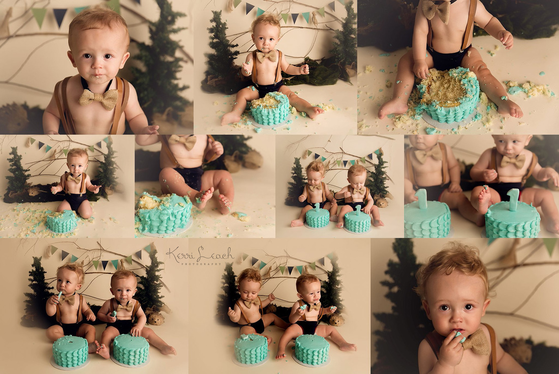 Kerri Leach Photography-Evansville IN milestone session-1 year session-Twins-smash session