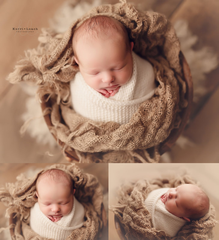 Newborn photographer Evansville | Indiana newborn photographer | Newborn photography posing | Prop posing Newborn photography | Kerri Leach Photography
