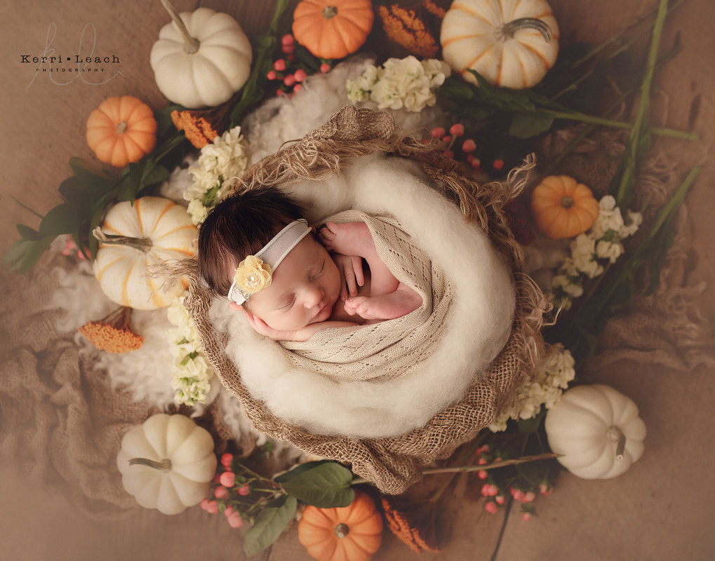 Newborn photographer Evansville, IN | Newborn photography studio in Newburgh | Newborn prop posing | Indiana newborn photographer