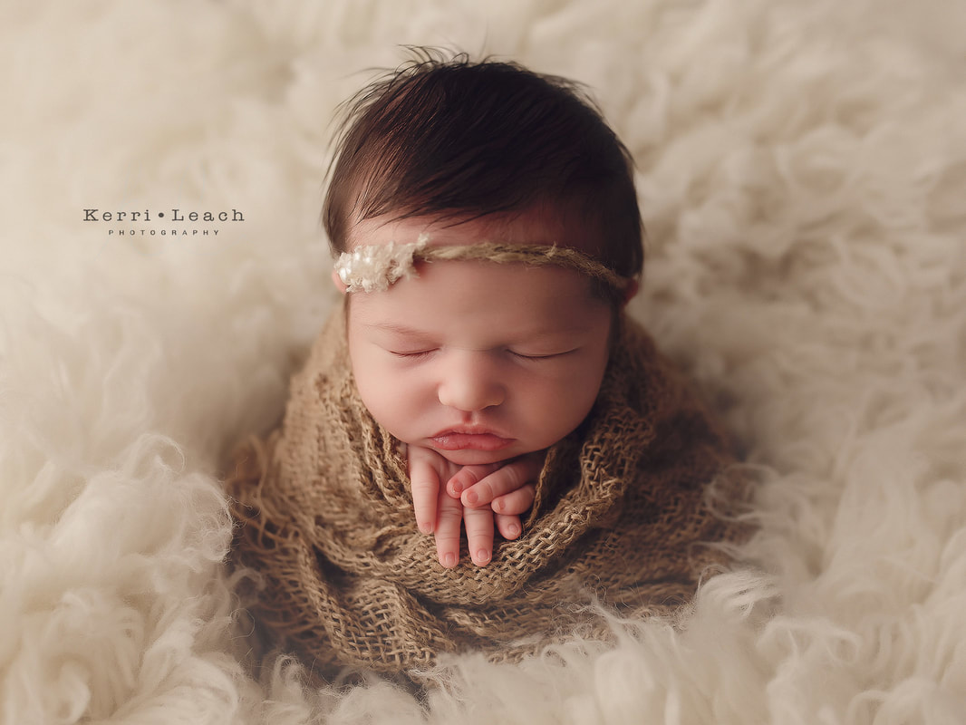 Newborn prop posing | Newborn photographer Evansville, IN | Owensboro area newborn photographer | Indiana newborn photographer